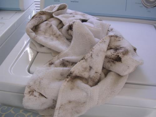muddy towel